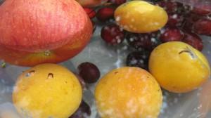 Bestäbtes Obst